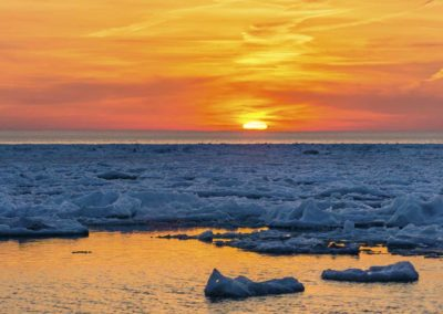 Frozen book images-027