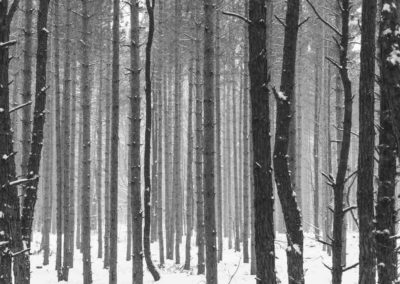 Frozen book images-032