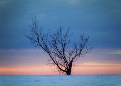 Frozen book images-037