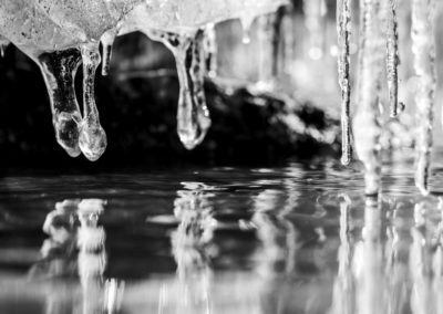 Frozen book images-039