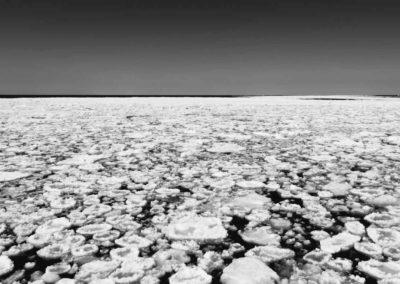 Frozen book images-045