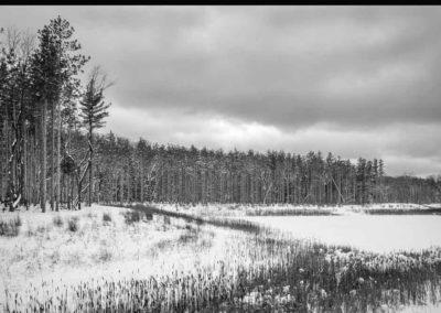 Frozen book images-057